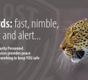 leopard-blog